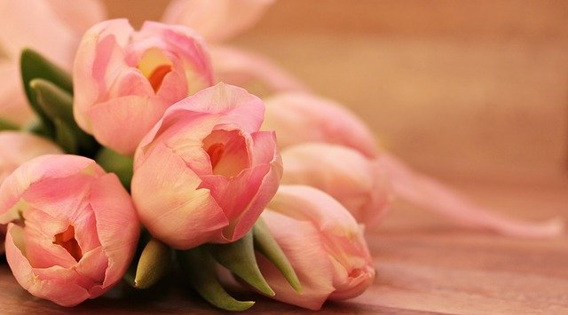 Which flowers can make your boyfriend happy?